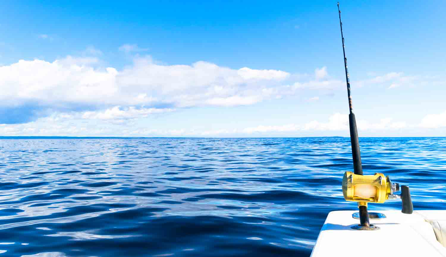 Choosing the Best Rental Boat for your next day out Fishing
